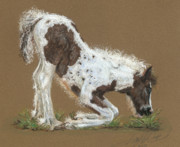 Horse Pastels Originals - Izzy by Terry Kirkland Cook