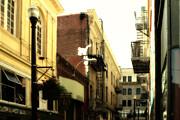 Wingsdomain Art and Photography - Jack Kerouac Street San Francisco . 7D7437