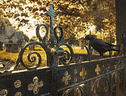 Headstones Metal Prints - Jackdaw On Church Gates Metal Print by Christopher and Amanda Elwell