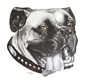 Custom Pet Drawing Prints - Jed Print by Marianne NANA Betts