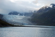 Ark Photo Prints - John Hopkins Glacier Print by Michael Peychich
