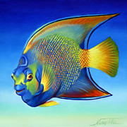 Angel Fish Posters - Juvenile Queen Angelfish Poster by Nancy Tilles