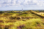 Heath Prints - Kampen - Sylt Print by Joana Kruse