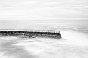 San Diego Framed Prints - La Jolla Seawall Framed Print by Tanya Harrison