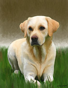 Pastel Mixed Media - Labrador Retriever by Snake Jagger