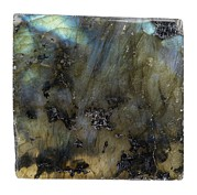 Labradorite Prints - Labradorite Print by Paul Biddle