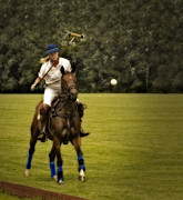 Recreation Photos - Ladies Polo  by Susan Candelario