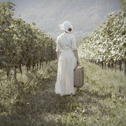 Straw Hat Posters - Lady In Vineyard Poster by Joana Kruse