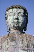 Amitabha Photo Framed Prints - Lahaina, Buddha At Jodo  Framed Print by Greg Vaughn - Printscapes