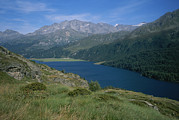 Saint Moritz Prints - Lake Segl In The Engadin Valley Print by Taylor S. Kennedy