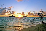 Kevin W. Smith Framed Prints - Lanikai Sunrise  Framed Print by Kevin Smith