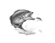 Bass Drawings Prints - Large Mouth Bass Print by Larry Dez Dismang