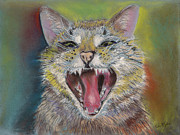 Carol Jobe - Laughing Cat Don
