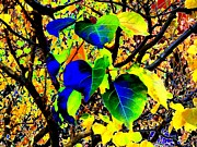 Lively Art - Lavish Leaves 1 by Will Borden