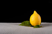 Grey Originals - Lemon by Catherine Lau