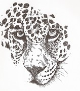 Dangerous Drawings Framed Prints - Leopard Framed Print by Pat Barker