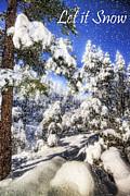 Saija  Lehtonen - Let it Snow