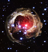 V838 Monocerotis Prints - Light Echoes From Exploding Star Print by Nasaesastscih.bond