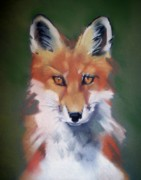 Fox Pastels Prints - Lil Rudy Print by Marika Evanson