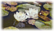 Waterlilies Mixed Media Posters - Lily Pond Poster by Dawn Serkin