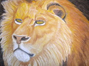 Lion Pastels - Lion by Paige Bacon