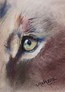 Lioness Drawings Posters - Lioness Single Eye Poster by Michelle Wolff