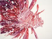 Tanya Prints - Lionfish Print by Tanya L Haynes - Printscapes