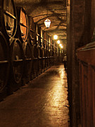 Wine Cellar Photos - Liquid Gold by Norm Holmberg