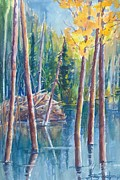 Beaver Pond Paintings - Little Mountain Beaver Pond 04 by Sukey Jacobsen