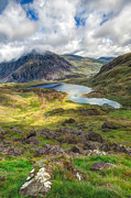Plants Digital Art Prints - Llyn Idwal Lake Print by Adrian Evans