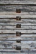 Woodworking Joint Posters - Log house texture Poster by Intensivelight