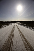 Snow Picture Prints - Logging Road In Winter Print by Mark Duffy