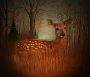 Evergreen Mixed Media Framed Prints - Lone Fawn Framed Print by Kevin Caudill