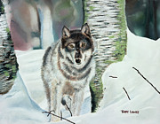 Realistic Wolf Framed Prints - Lone Wolf Framed Print by Terry Lewey