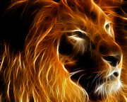 Lion Digital Art Metal Prints - Lord Of The Jungle Metal Print by Wingsdomain Art and Photography