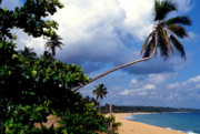 Puerto Rico Prints - Los Tubos Beach Print by Thomas R Fletcher