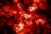 Burning Love Prints - Love with flowers Print by Phill Petrovic