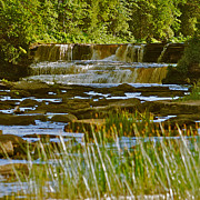 Michigan Waterfalls Prints - Lower Tahquamenon Falls 6128 Print by Michael Peychich