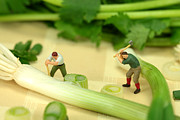 Vegetables Digital Art Originals - Lumberjacks cutting green onion in cilantro Jungle by Mingqi Ge