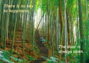 Blessing Framed Prints - Lush Bamboo Forest Framed Print by Yali Shi