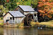 Mabry Framed Prints - Mabry Mill Framed Print by Lena Auxier