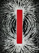 Magnetic Pole Posters - Magnetic Field Poster by Cordelia Molloy