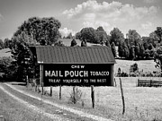 Mary Almond - Mail Pouch Barn