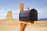 Mailbox In Desert Print by David Buffington
