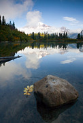 Mt Rainier Photos - Majesty Hidden by Mike  Dawson