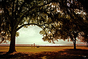 Sunshine Louisiana Framed Prints - Mandeville Lakefront Framed Print by Scott Pellegrin