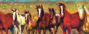 Horses Drawings Metal Prints - Mares and Foals Metal Print by Frances Marino