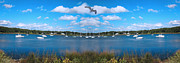 Flying Seagulls Framed Prints - Marina Framed Print by Lourry Legarde