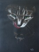 Hummingbird Pastels - Martin the cat. by Brenda Maas