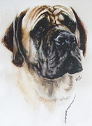 Mastiff Dog Paintings - Mastiff by Barbara Keith